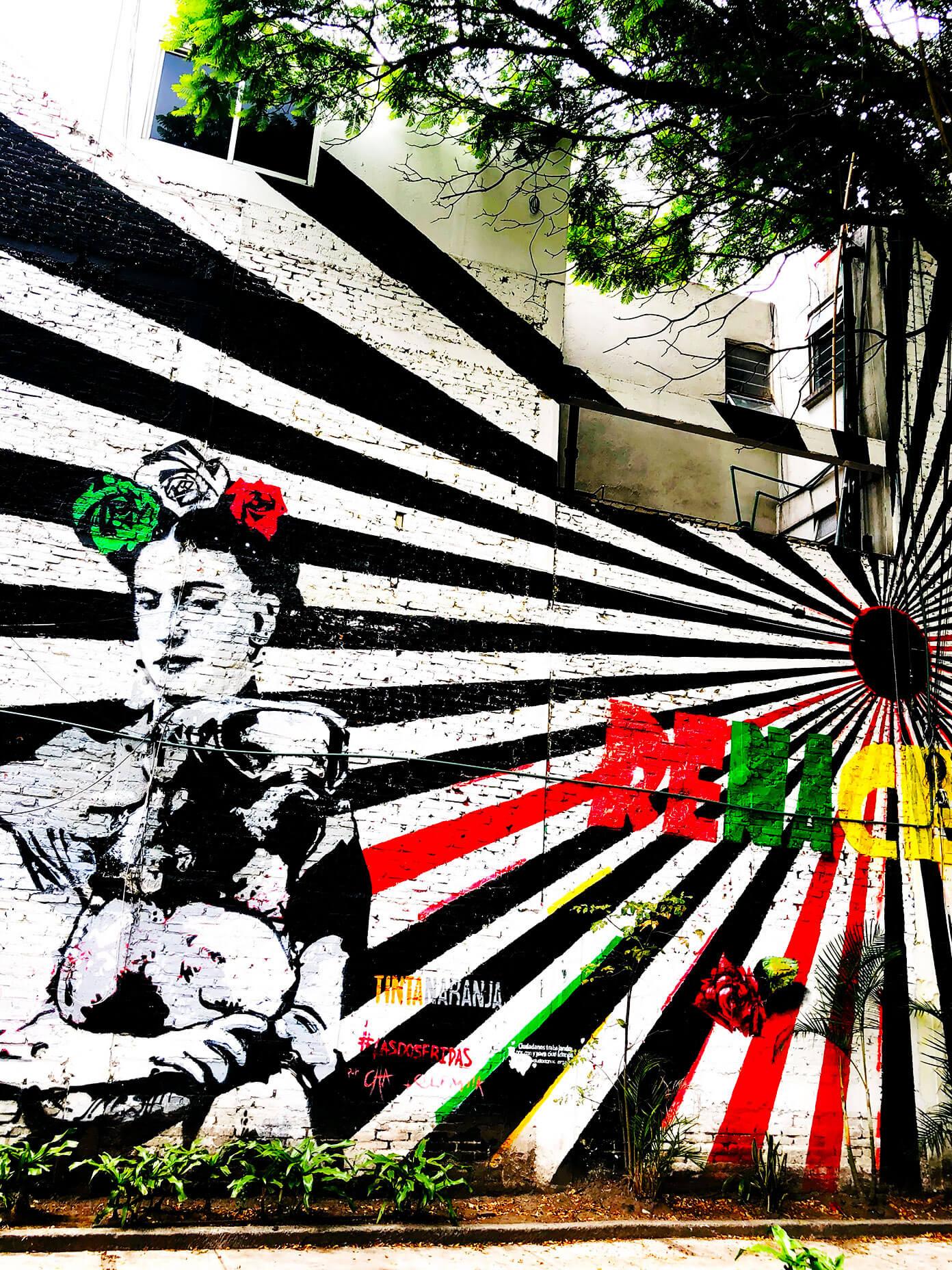 Frida Mural in Roma Norte