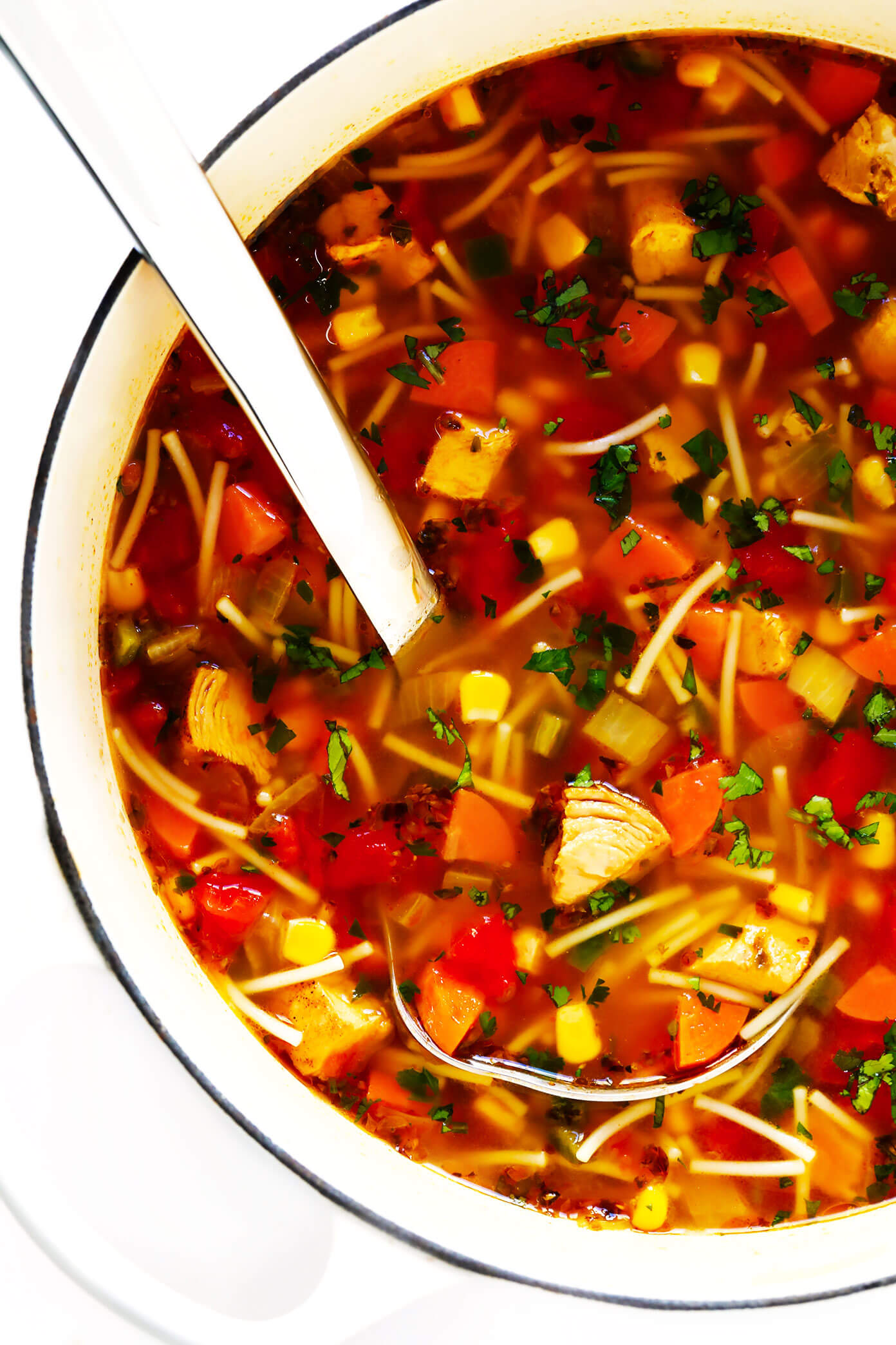 Mexican Chicken Noodle Soup with Fideos